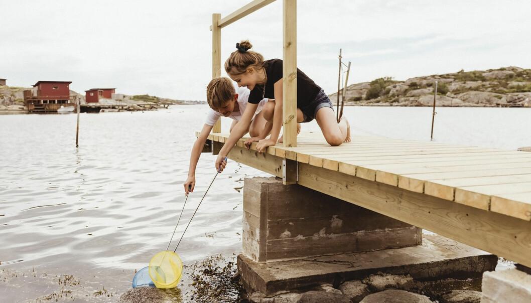 familj corona sommarlov aktiviteter semester med barn
