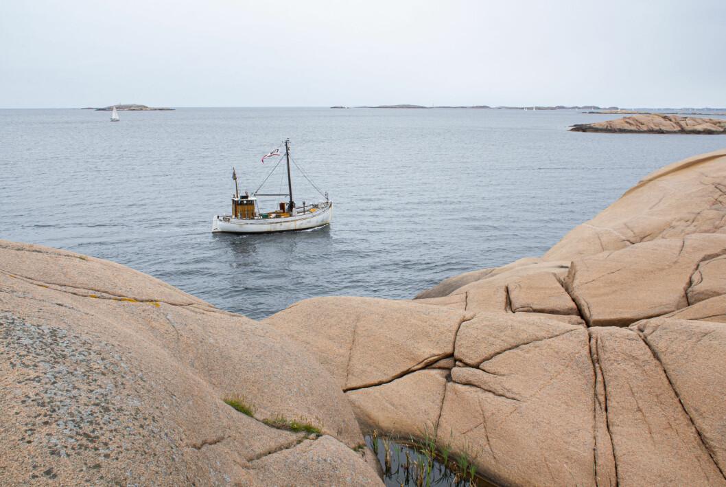 sommar hav vatten klippor