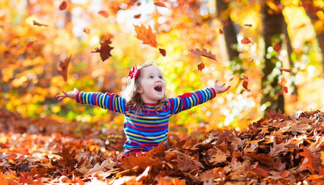 Flicka leker i lövhög