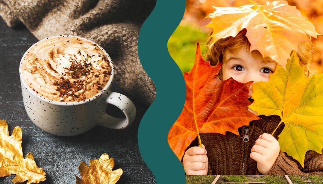 en kopp varm choklad och pojke som leker i lövhög