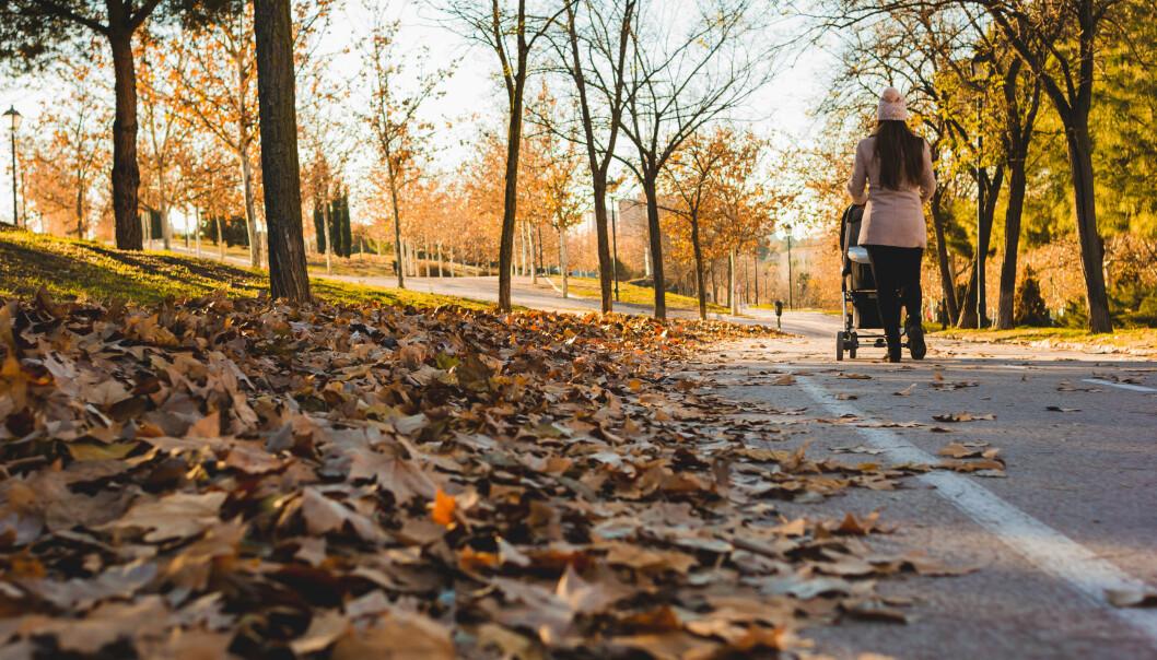 kvinna tar höstpromenad med barnvagn