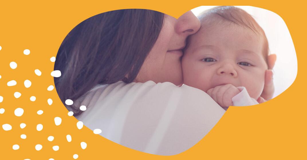 Mamma gosar med bebis