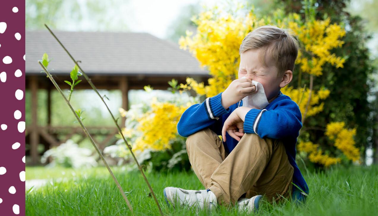 pojke som är pollenallergisk
