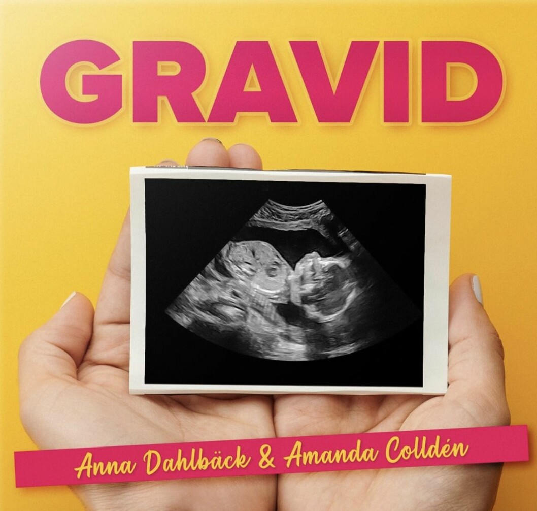 gravid podd