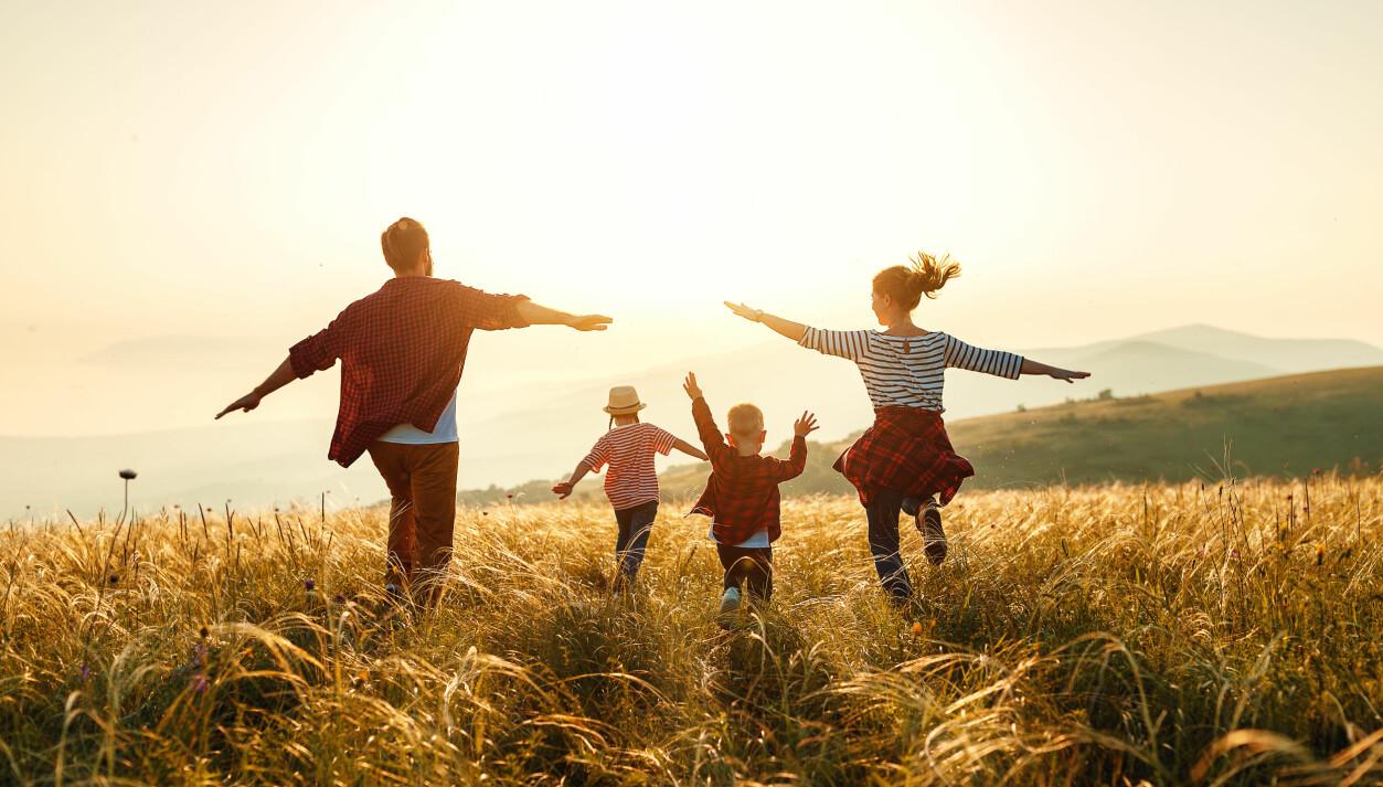 Familj på vpren på en äng